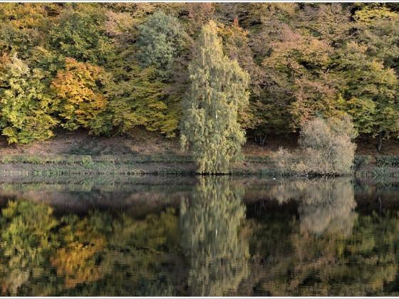 Fotowettbewerb: Herbstbilder