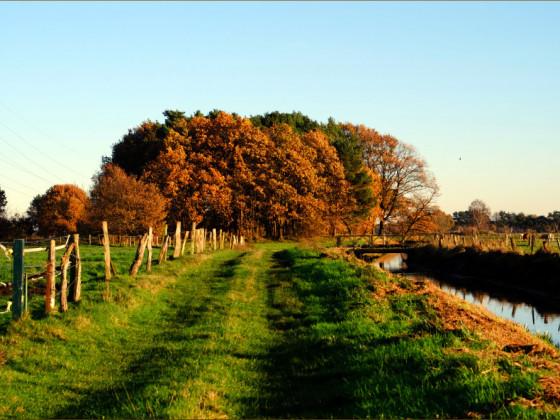 mehr Herbstfarben